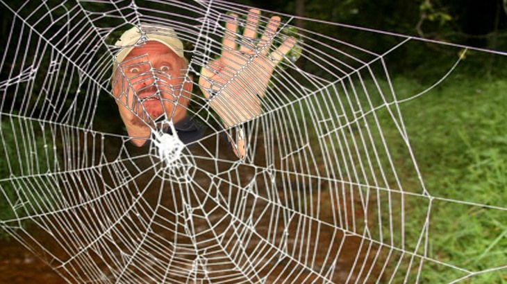 Man in spider web