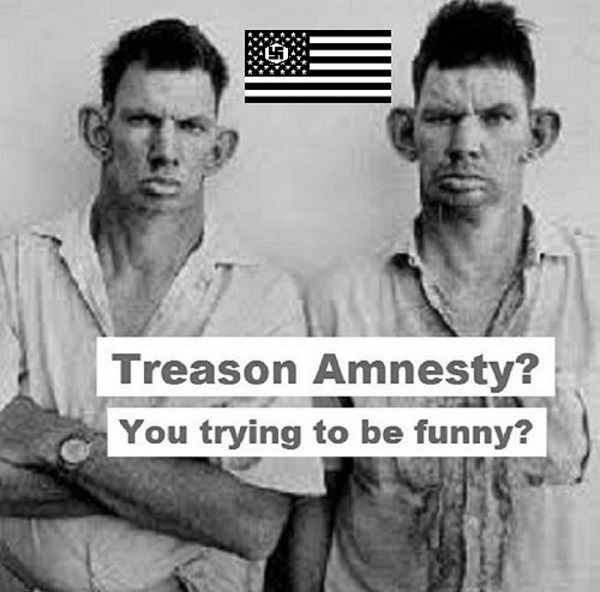American Nazi treason amnesty 600