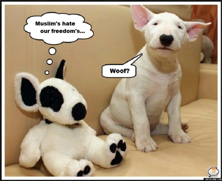 Bull terrier and Pup Muslims hate our freedoms