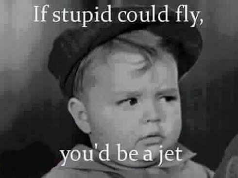 If stupid should fly ~ Jet 490