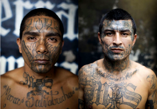 MS 13 Five