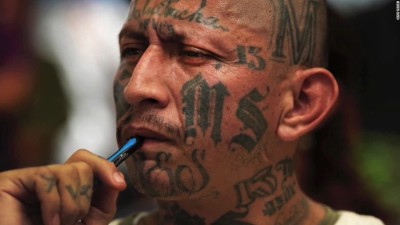 MS 13 One
