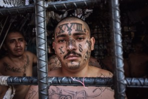 MS 13 Two