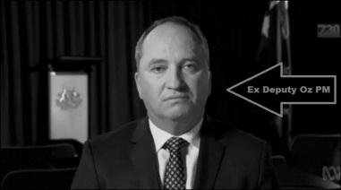 barnaby-joyce-nazi-ex deputy PM bw 800