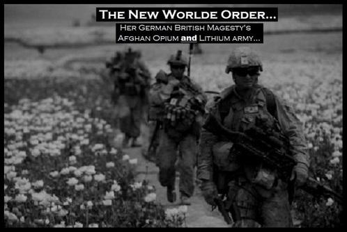 Afgan opium 490