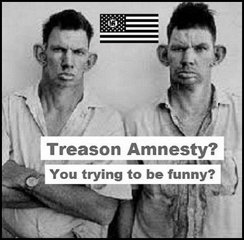 Amnesty twins 490