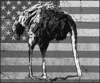 American patriot ostrich 560