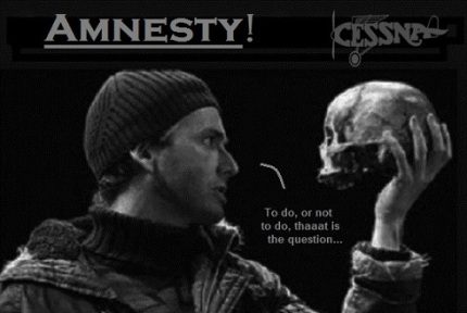 Cessna Skull to do or not to do Amnesty 490