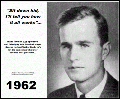felix leighter bush 600 sit down kid