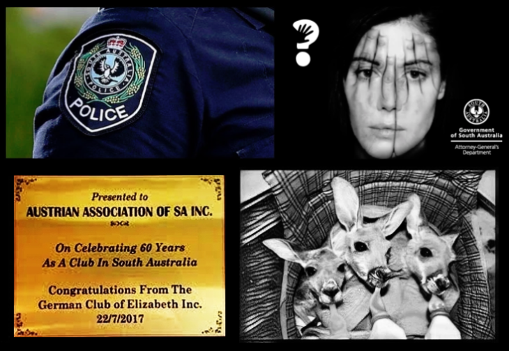 SA Police Coroner Austrian Association German club baby kangaroos