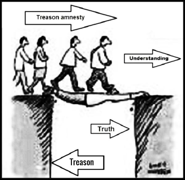 Amnesty Treason MUCH CLEARER 600 thicker border (3)