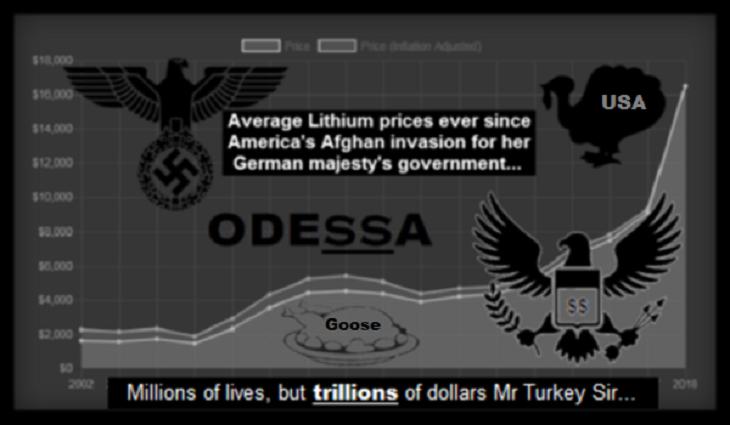 Odessa-USA Turkey Afghan-lithium- goose 730