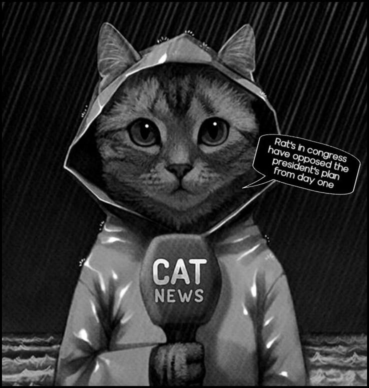 If Ratty-Cat ran for USpresident!