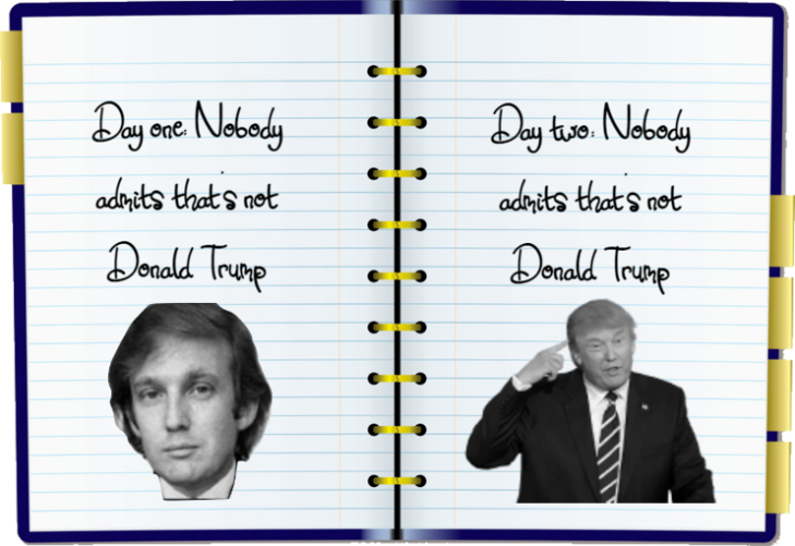 Trump impeachment Diary day one and two