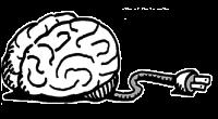 Brain 200 TRANS